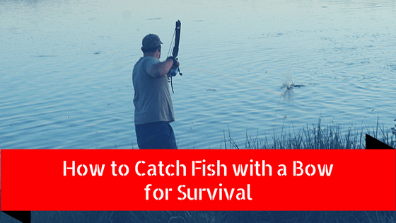 how to catch fish with a bow for survival