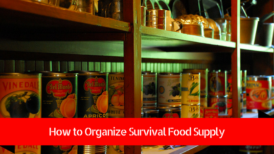 how to organize survival food