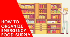 how to organize emergency food supply