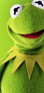 Kermit the frog Samsung galaxy S10 wallpaper