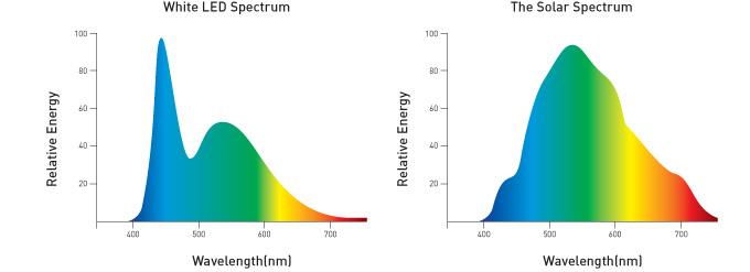 Comparación del tipo de luz entre bombillas LED y la luz solar