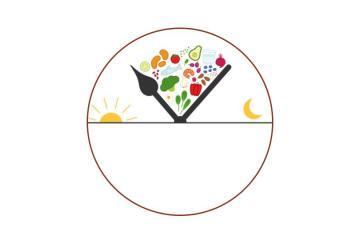 alimentación restringida en el tiempo y el ritmo circadiano de alimentación/ayuno