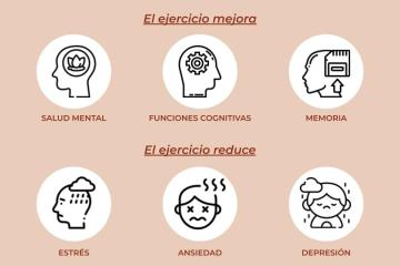 Todos los beneficios del ejercicios físico en el cerebro