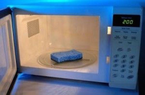Who knew you could place a sour sponge in the microwave and make it like new again?