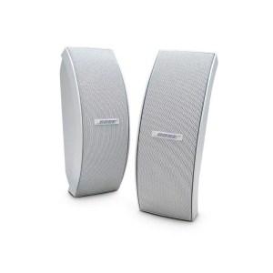 Bose Environmental Speaker