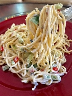 Vermicelli on fork