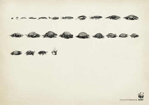 WWF: Evolution, Soup