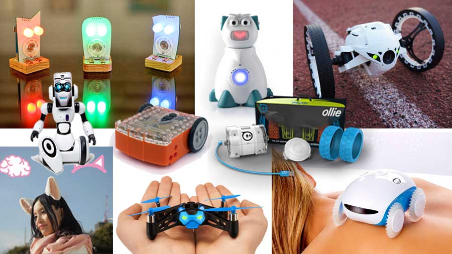 Robotic Christmas Gifts 2014