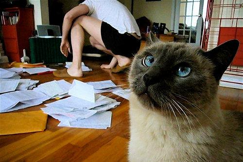 Sloppy tax preparation