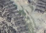 Les herbiers de zostères en secteur conchylicole : des interactions mal connues