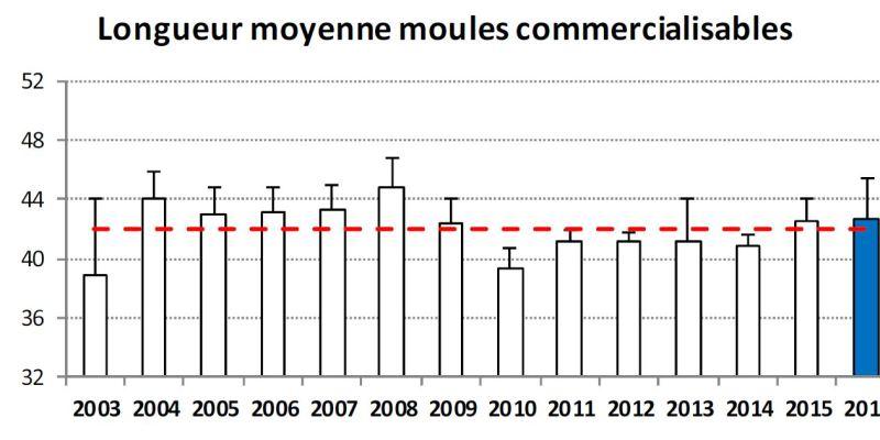 Longueur moyenne des moules commercialisables