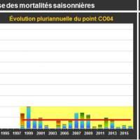 Lingreville Mortalité Adulte