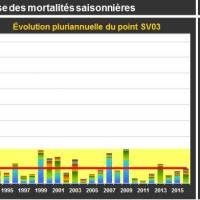 St Vaast Mortalité Adulte