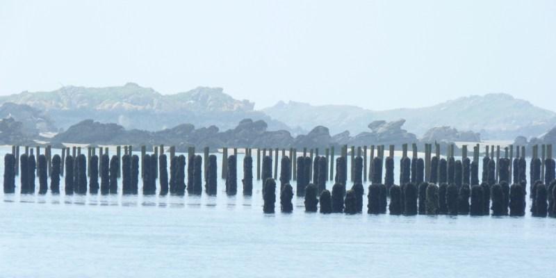 La mytiliculture sur l'archipel de Chausey (@SMEL)