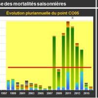 Chausey Mortalité Juvéniles