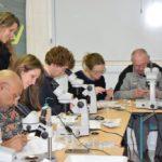Formation sur la pathologie de l'anneau brun de la palourde