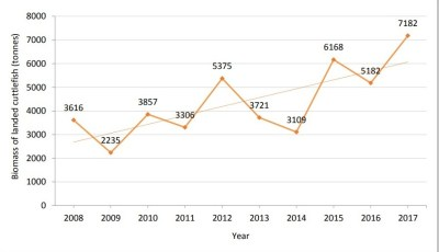 Débarques totales des seiches au Royaume-Uni entre 2008 et 2017 (IFCA Sussex, 2018)