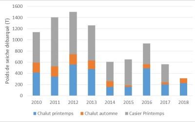 Estimation des débarques totales des seiches de l'Ouest Cotentin entre 2010 et 2017 (Données CRPN & DML50) [Données Casiers 2018 non disponibles]