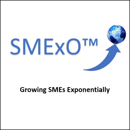 Growing SMEs Exponentially