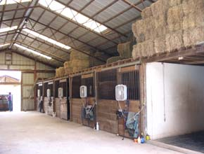 13 Stall Barn With Indoor Ring For Rent In East Coventry PA