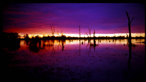 WATER. THURSDAY JUNE 8. 2006. .........AFR FIRST USE ONLY........  PIC JAMES DAVIES  SUN SETS ON OVER THE WATERS OF A MURRAY RIVER LAKE NEAR KERANG VICTORIA.  DAM LAKE WATER STORAGE RECYCLING SALT SALINITY EVAPORATION IRRIGATION FARMING DRINKING WATER HYDRO ELECTRIC CLIMATE CHANGE GLOBAL WARMING DROUGHT DRY DEAD DYING DIE BACK ENVIROMENT NATURE. SPECIALX 1234