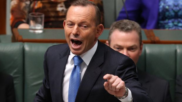 Former prime minister Tony Abbott will not quit Parliament before the next election.