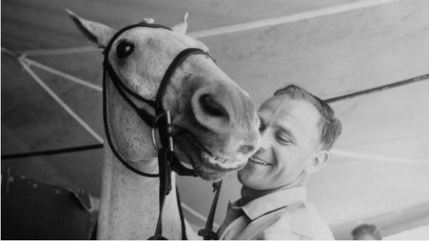 A horse is more than a horse in the remarkable documentary Harry and Snowman.
