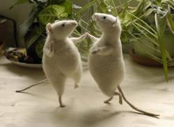 fadeeva-mice.jpg (250×183)