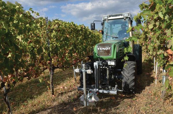 La trasformazione digitale nel settore agrifood: casi studi concreti in viticoltura