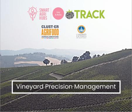 Data-driven Vineyard Precision Management – VINPREC