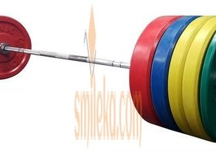 olympic barbell and weight