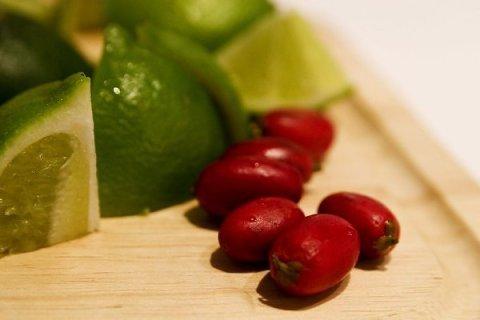 Coolest Fruit