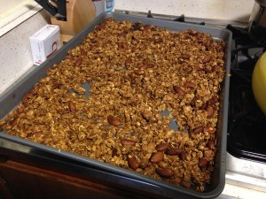 Fruit n Nut Granola - 6