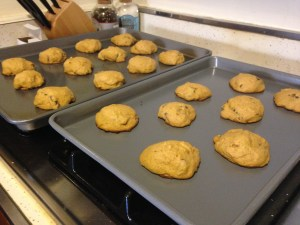 Pumpkin Chocolate Chip Cookies - 13