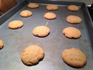 Big Soft Ginger Cookies - 15