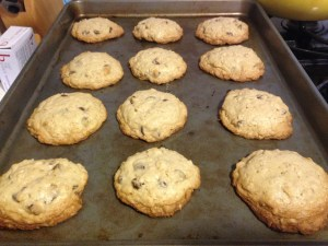 Ann's Oatmeal Chocolate Chip Cookies - 12