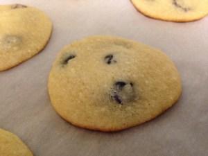 Lemon Blueberry Ricotta Cookies - 20