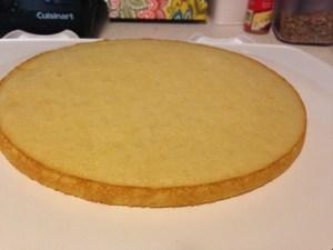 Lemonade Layer Cake - 16