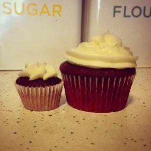 Red Velvet Cupcakes - 32
