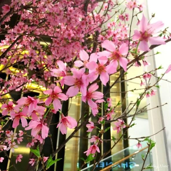 Macy's flower show new york city