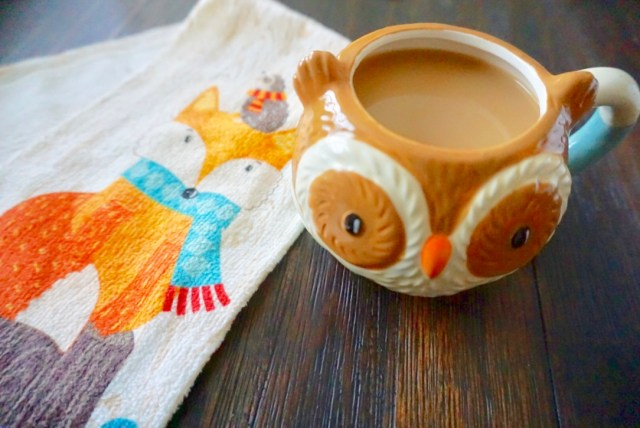 owl mug fall theme