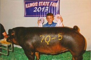 Boy smiling with award ribbons in front of his pig at Illinois State Fair 2013
