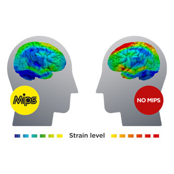 SMITH MIPS Strain the Brain