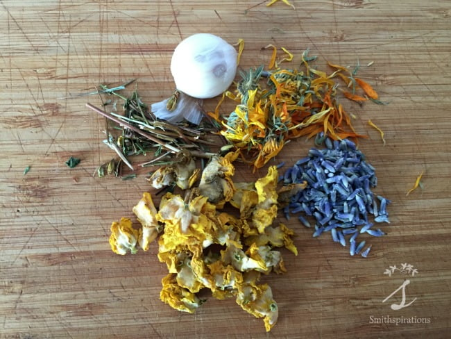 Herbal Ear Oil with Mullein and Garlic. This easy home herbal project is a must-have when you have little children. It's a safe and effective ear infection remedy!