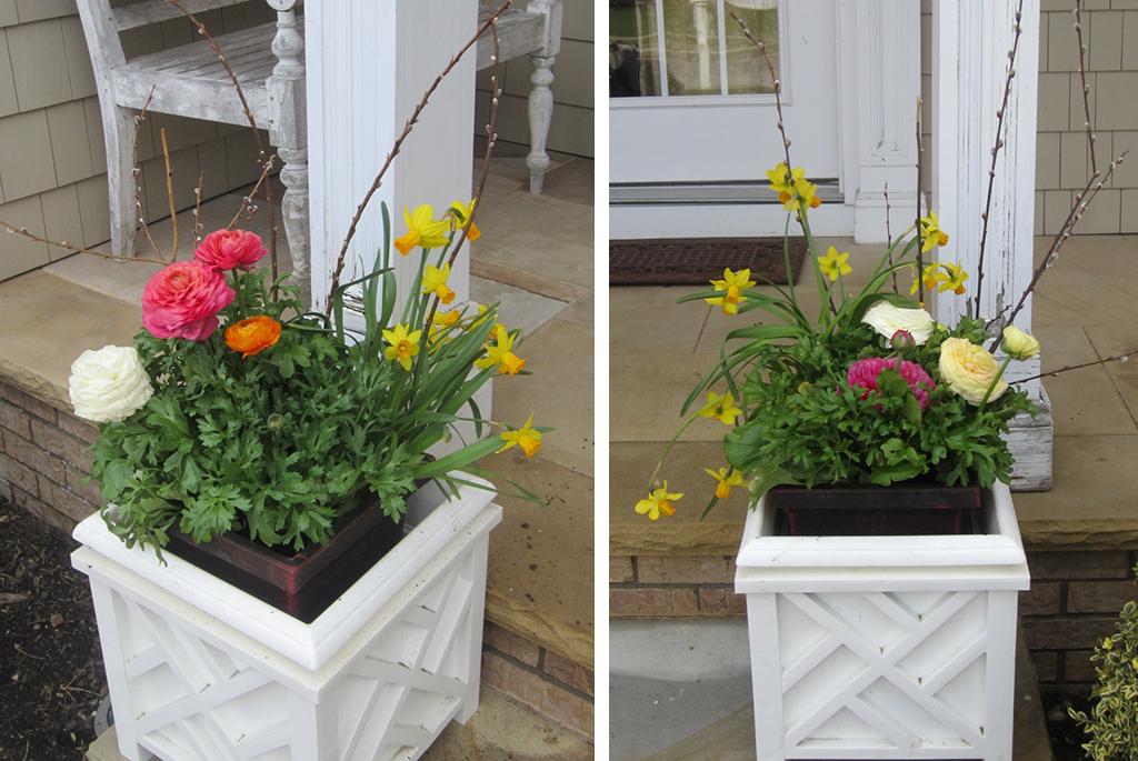 Spring planter ideas and inspiration diy spring planter inspiration mightylinksfo
