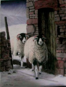 Sandra Parker Sheep Art in the Yorkshire Dales
