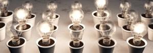 © Francesco De Paoli - Fotolia.com - row of potted light bulbs