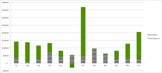 Monthly fluctuations in income