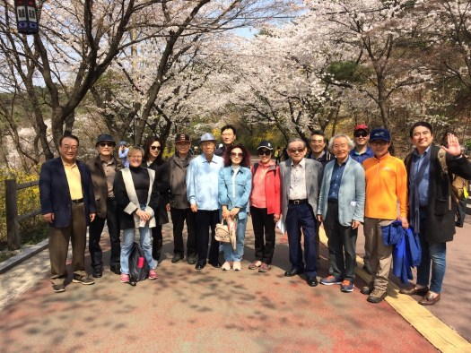 Rotary hikes Namsan in spring 2017