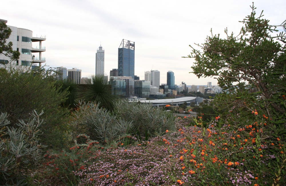 Winter view of Perth CBD from Kings Park